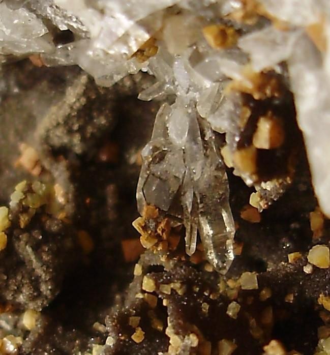 1372595096_quartzparapluieMdB1.JPG.3f4255a654f3e559d2c328428f285318.JPG