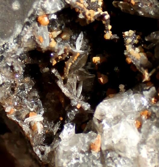 1690910511_cristalpointu.JPG.48460eef8f14aed45392c5b6470c14d1.JPG