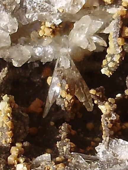 74969870_quartzparapluieMdB2.JPG.86d3f8d647d5b1b4ae0f5cfeadbc55ef.JPG