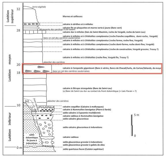 0507_Geologie_sortie_Saint_Gobain_Lutetien_577_550.jpg