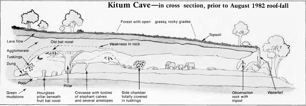 kitum-cave-cross-section23.jpg