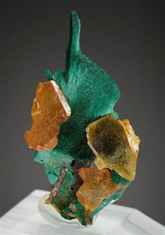 wulfenite-kaokoveld-namibie-mineral.jpg