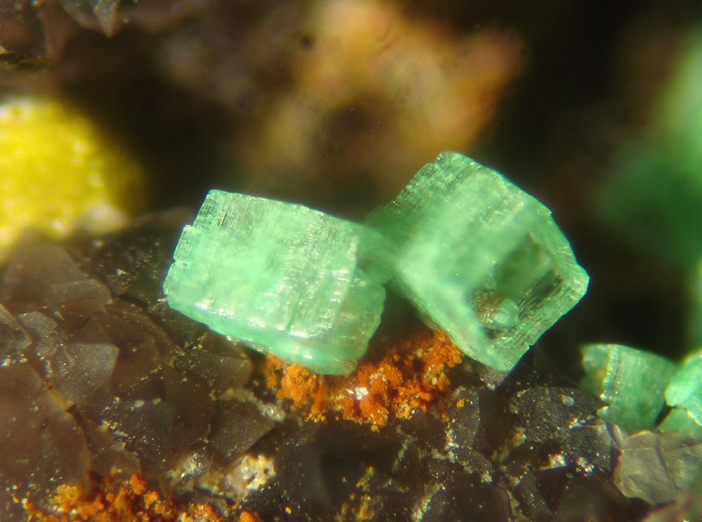 Torbernite QPMI 634 -4 ( fov 2 mm ).jpg