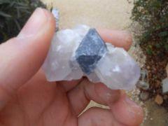 Galène cristallisée en octaèdre - Durfort (30)