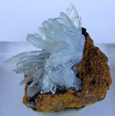Baryte Bleue sur Limonite