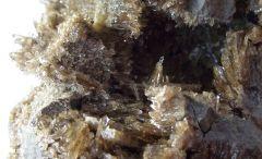 Septaria à Baryte