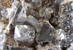 Septaria à Quartz diamant, Calcite et Ankérite