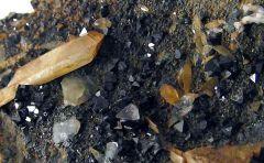 Titanite et Magnétite