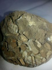 fragment de la roche à identifier