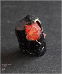 SPESSARTITE sur schorl- Little 3 mine U.S.A